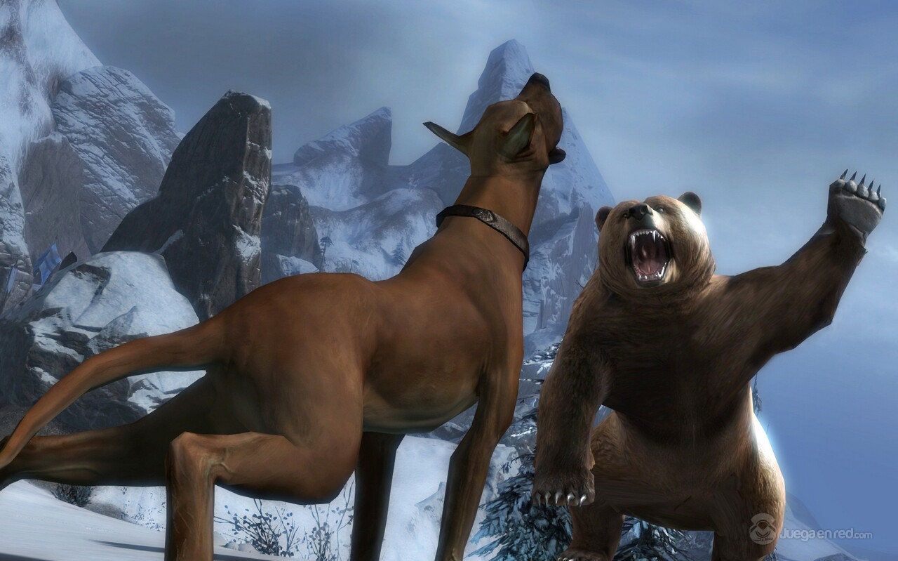 Pulsa en la imagen para verla en tamaño completoNombre: Bear_vs_Pet.jpgVisitas: 4443Tamaño: 176.7 KBID: 3441
