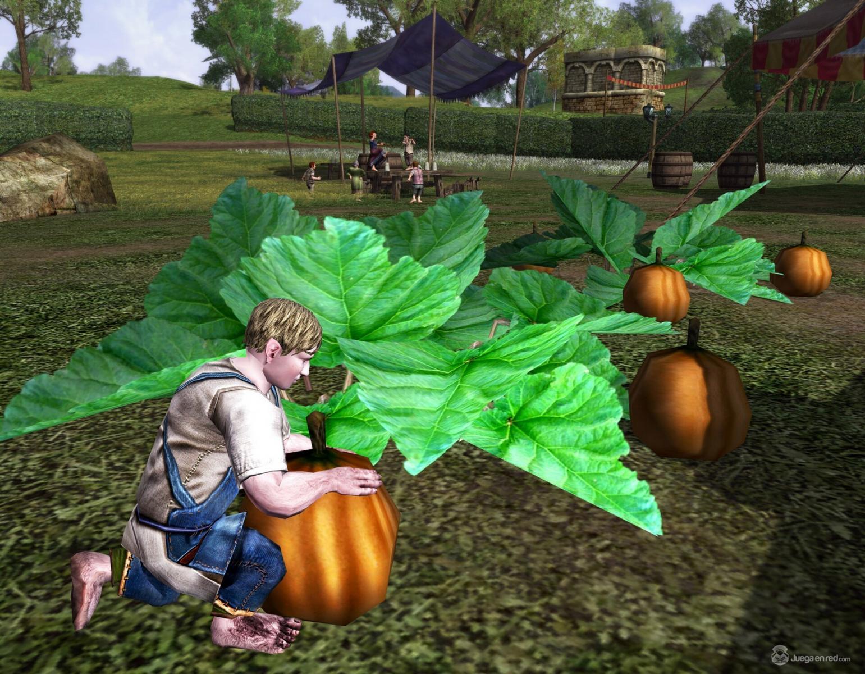 Pulsa en la imagen para verla en tamaño completoNombre: fall_festival_pumpkins.jpgVisitas: 105Tamaño: 303.0 KBID: 6008