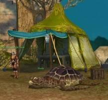 arcane-saga-turtle