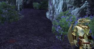 EverQuest 2 review04