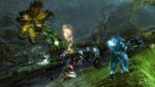 GW2_2014-01_-_Amber_Jungle_Wurm_1