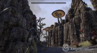 TESO screenshot (4)