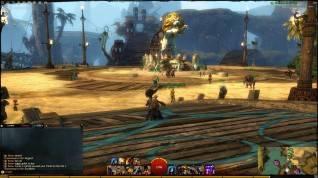Guild Wars 2 screenshot (13)